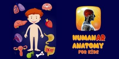 HumanAR Anatomy for Kids - iOS Source Code