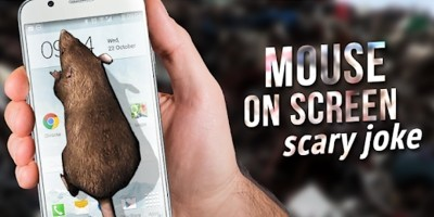 Mouse on Screen Scary Prank - Android App