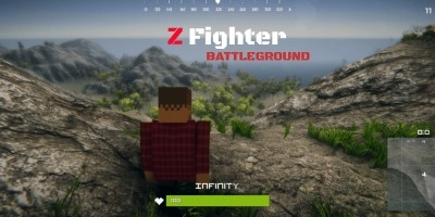 Z Fighter - Battle Royale Unity Source Code