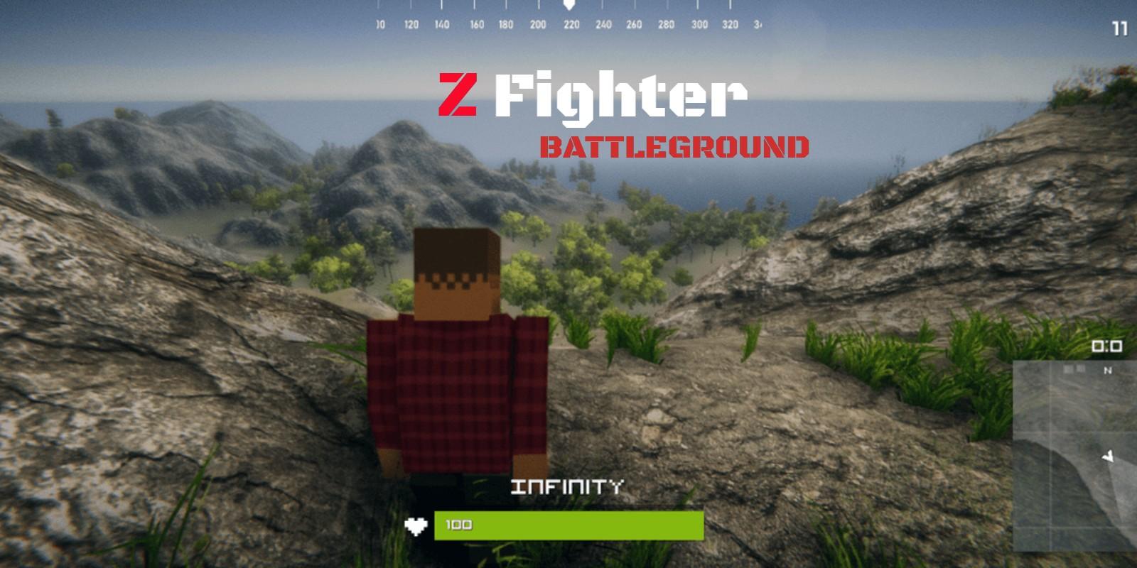 Z Fighter - Battle Royale Unity Source Code