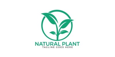 Natural Plant Logo Design