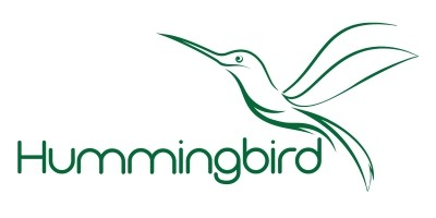 Abstract  Hummingbird Vector Logo