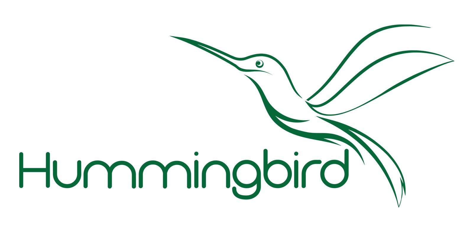 Abstract  Hummingbird Vector Logo