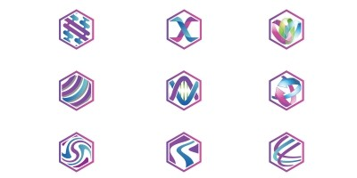 Purple Hexagon Logo Template