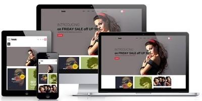 Ap Basic - Fashion Shopify Theme
