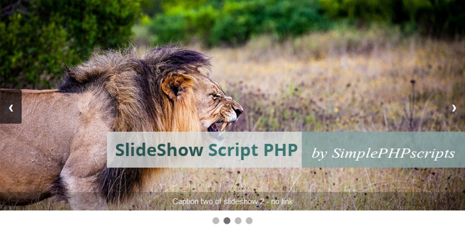 Slideshow Script Php Php Scripts Php Code Codester