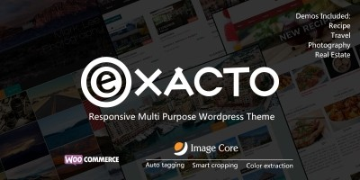 Exacto - Responsive WordPress Theme