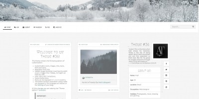 Arctic - Tumblr Theme