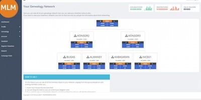 Binary MLM - PHP Script