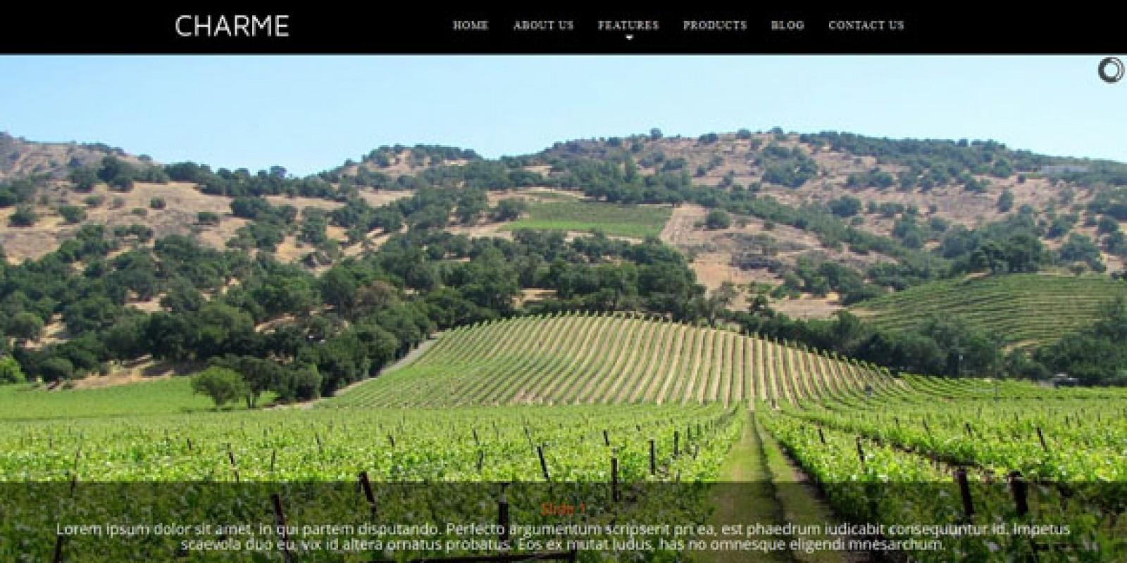 Charme - Winery And Wines WordPress Theme