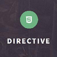 Directive - One Page Responsive WordPress Theme