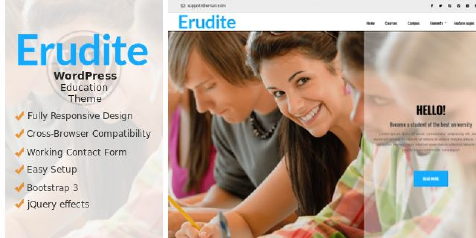 Erudite - WordPress  Education Theme