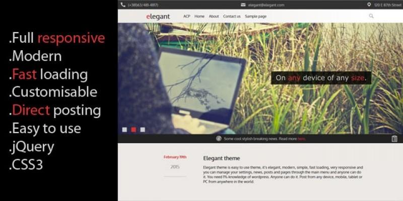 Elegant - Responsive WordPress theme with CMS