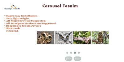 Carousel Tasnim - WordPress Slider Plugin
