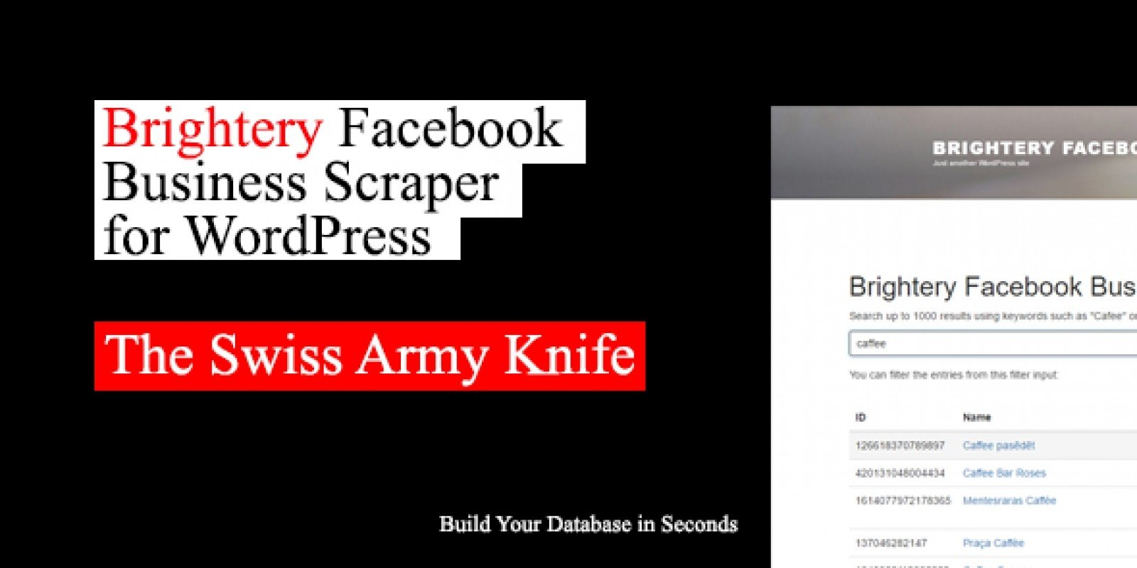 Facebook Business Scraper - Wordpress Plugin