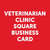 Veterinarian Clinic Square Business Card