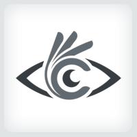 Eye - Perfect Vision Logo Template