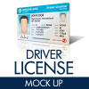 driver-license-mock-up