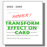 Hover Transform Effect on Card