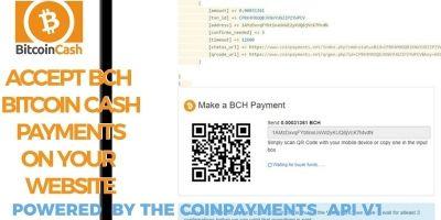 Bitcoin Cash Receive Payments - CoinPayments API