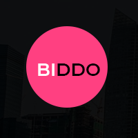 Biddo - One Page Portfolio WordPress Theme