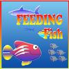 feeding-fish-construct-2-template