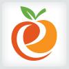 letter-e-orange-logo