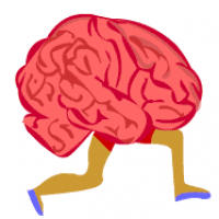 Brain Games .Net Full Application Source Code
