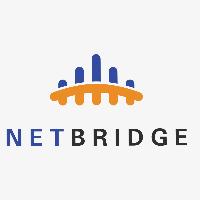 Netbridge Logo Template