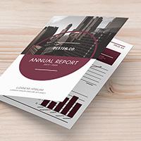 Bi-Fold Corporate Brochure Annual Report – A4