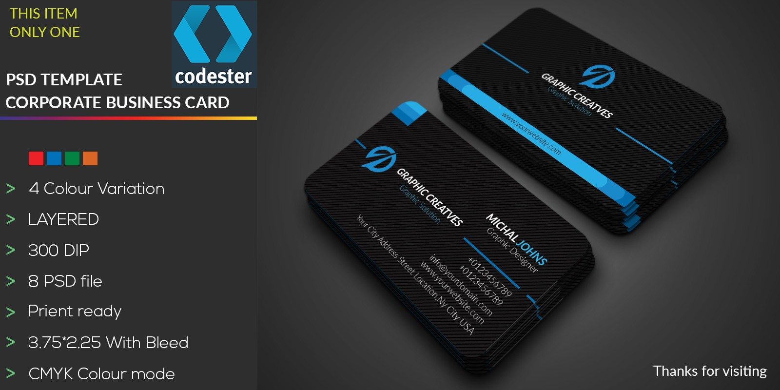 Simple Professional Business Card