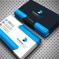 Professional Business Card v2