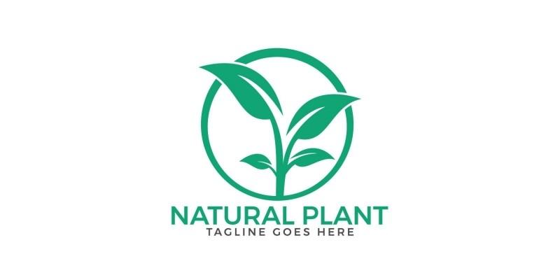 Natural Plant Logo Design