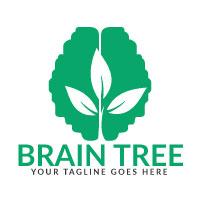 Brain Tree Logo Design