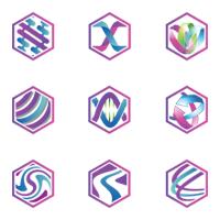 Purple Hexagon Logo Template