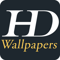 HD Wallpaper - Android Template With Admin Panel