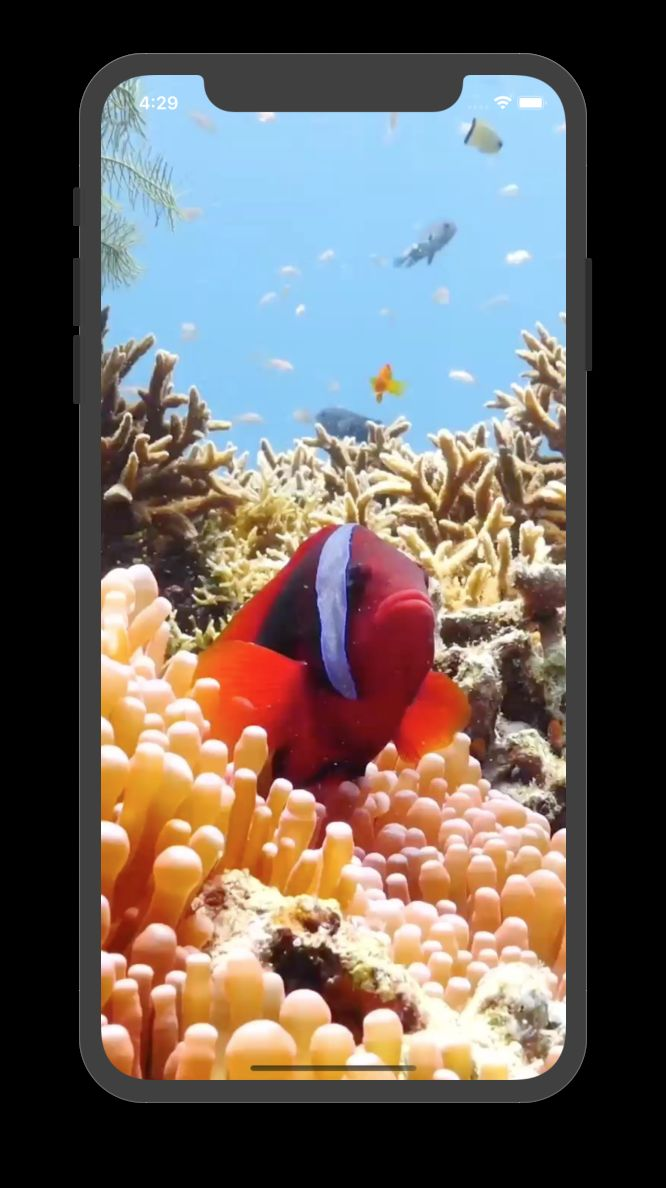 Live Wallpapers - Full iOS App With Build Mode by ...