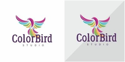 Color Bird Logo