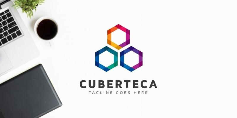 Hexagon Colorful Logo