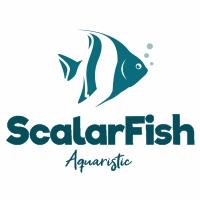 Scalar Fish Logo