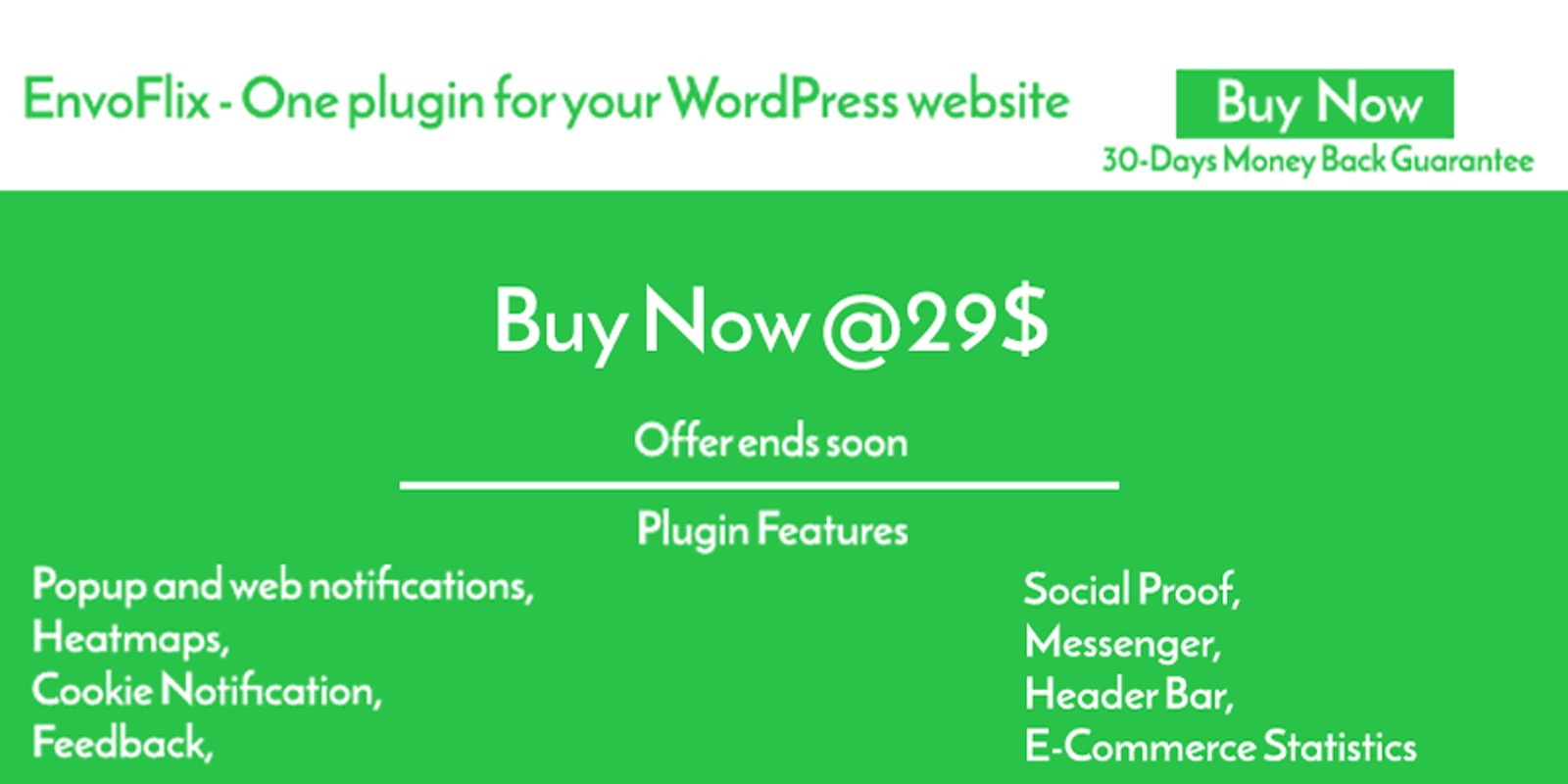 EnvoFlix WordPress Plugin