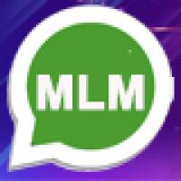 B-MLM Single Leg Plan Pro Software