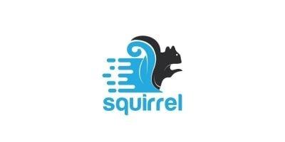 Squirrel Logo Design.