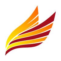 Fly Printing Company Logo Design