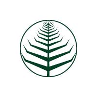 Minimalist Leaf Logo