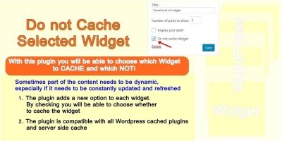 Do Not Cache Selected Widget WordPress Plugin