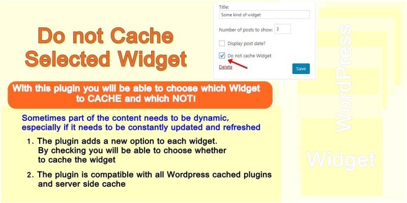 Do Not Cache Selected Widget WordPress Plugin