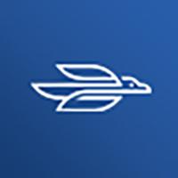 Penguin Airlines E-Ticket - Adobe Photoshop App UI