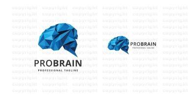 Professional Brain Logo