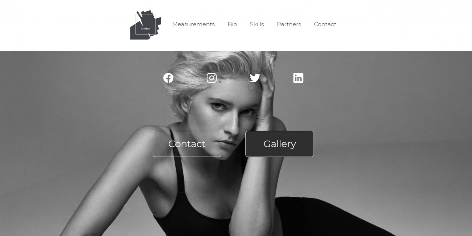 Artifical - Personal Fashion Gallery HTML Template